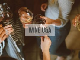 Innovation Consultancy Wine U&A